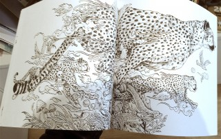 Animorphia colouring book page spread